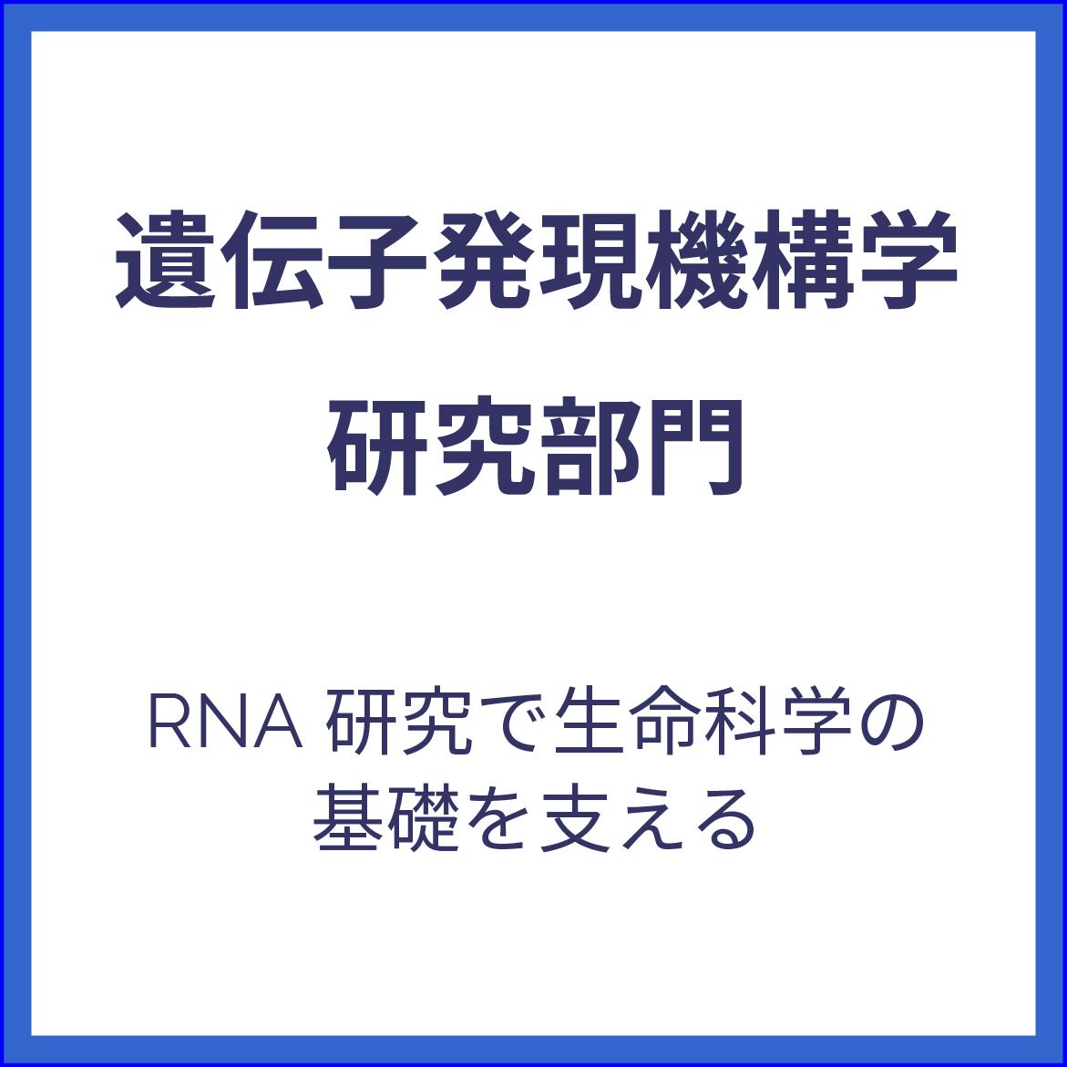 遺伝子発現機構学研究部門